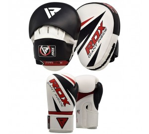 Focus Pads with Boxing Gloves